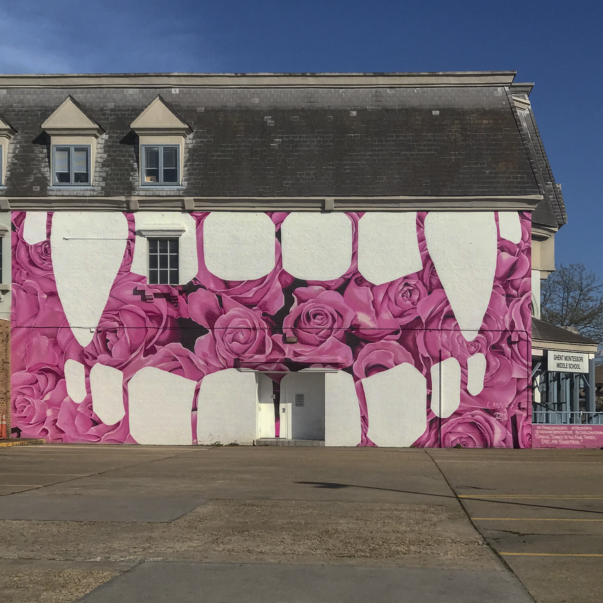 The Rose Covered Montessori Middle School Building Ghent Norfolk VA